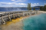 Dennis Wert - Yellowstone Boardwalk